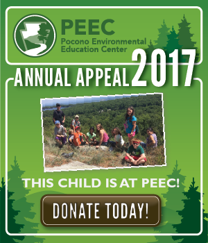 PEEC Annual Appeal button