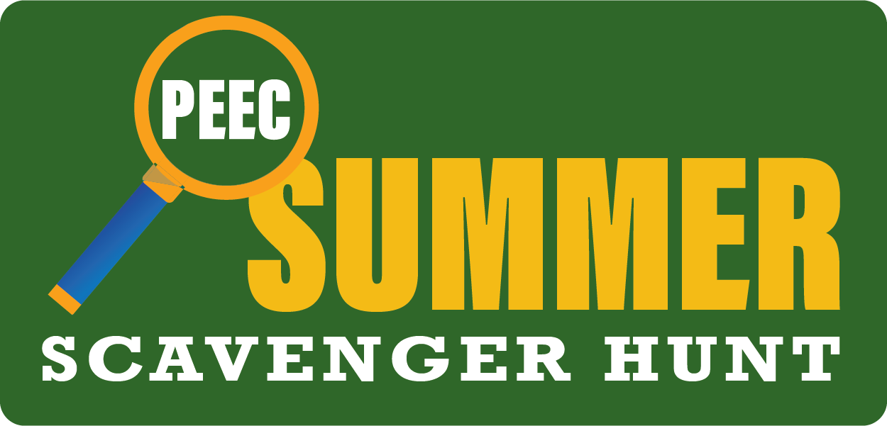 Summer Scavenger Hunt - Learn More